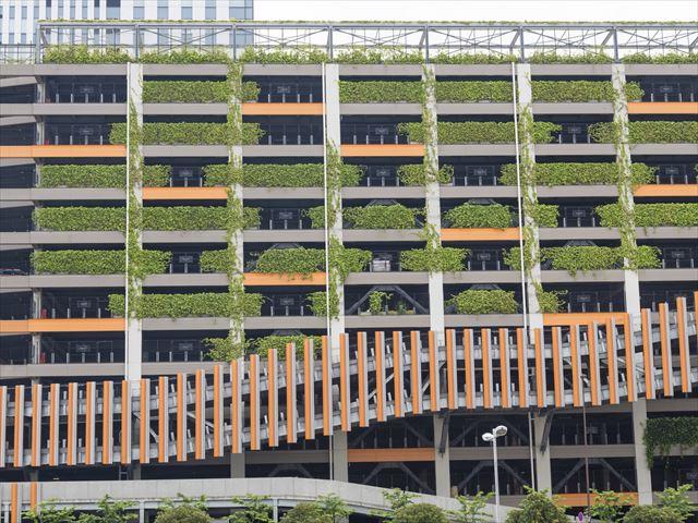 高層ビルにも緑の恩恵を!安全な壁面緑化の方法を学ぼう!
